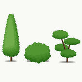 Garden Tree with Different Shape.Vector Illustration.