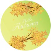 Hello Autumn Background with Text Greeting With Autumn Leaves.