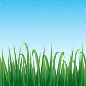 Green grass border with sparkling blue sky background.