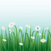 Grass and white flowers border with blue sky background.